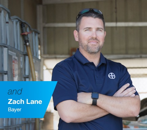Zach Lane Bayer Representative